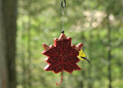 10071 Pinebush Leaf Shaped Blackoil Peanut Feeder Goldfinch
