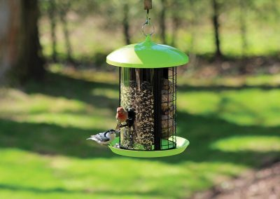 10110 Pinebush Dome Roof Triple Compartment Feeder Nuthatch Finch
