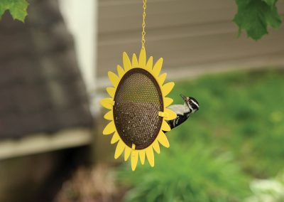 10360 Pinebush Sunflower Chips Hearts Feeder Woodpecker