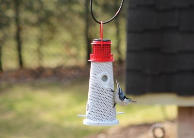 10756 Pinebush Solar Lighthouse Feeder Nuthatch