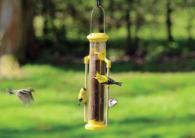 10811 Pinebush Wingfield Finch Feeder with Wood Dowels