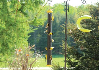 10826 Pinebush Wingfield 30 inch Finch Feeder