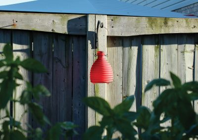 18008 Pinebush Red Wasp Catcher 1