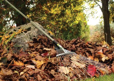 22150 Pinebush Expandable Leaf Rake