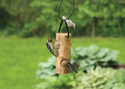 40301 Pinebush Cedar Log with Suet Woodpecker Nuthatch