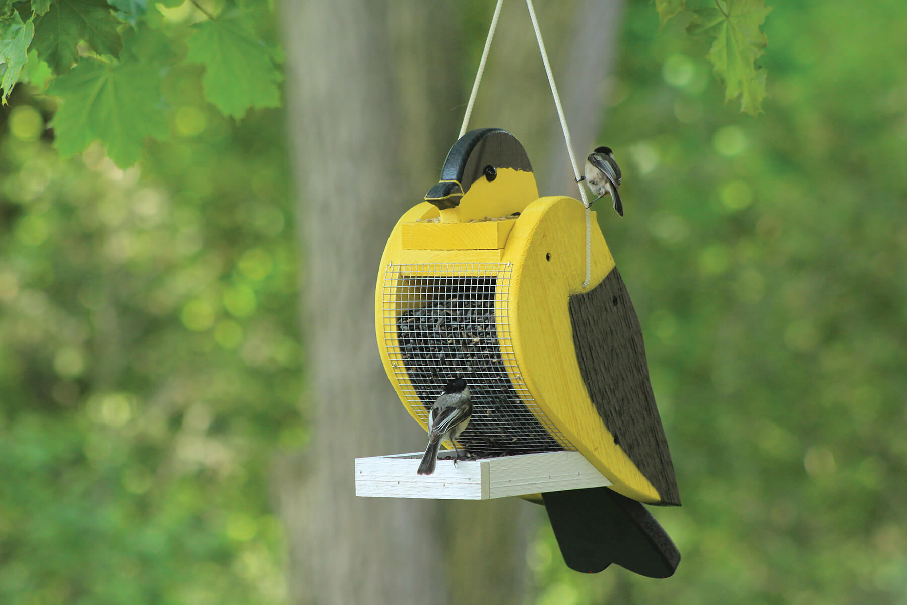 78004 Pinebush Goldfinch Shape Wood Feeder Chickadee