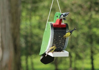 78010 Pinebush Hummingbird Shape Wood Feeder Nuthatch Goldfinch