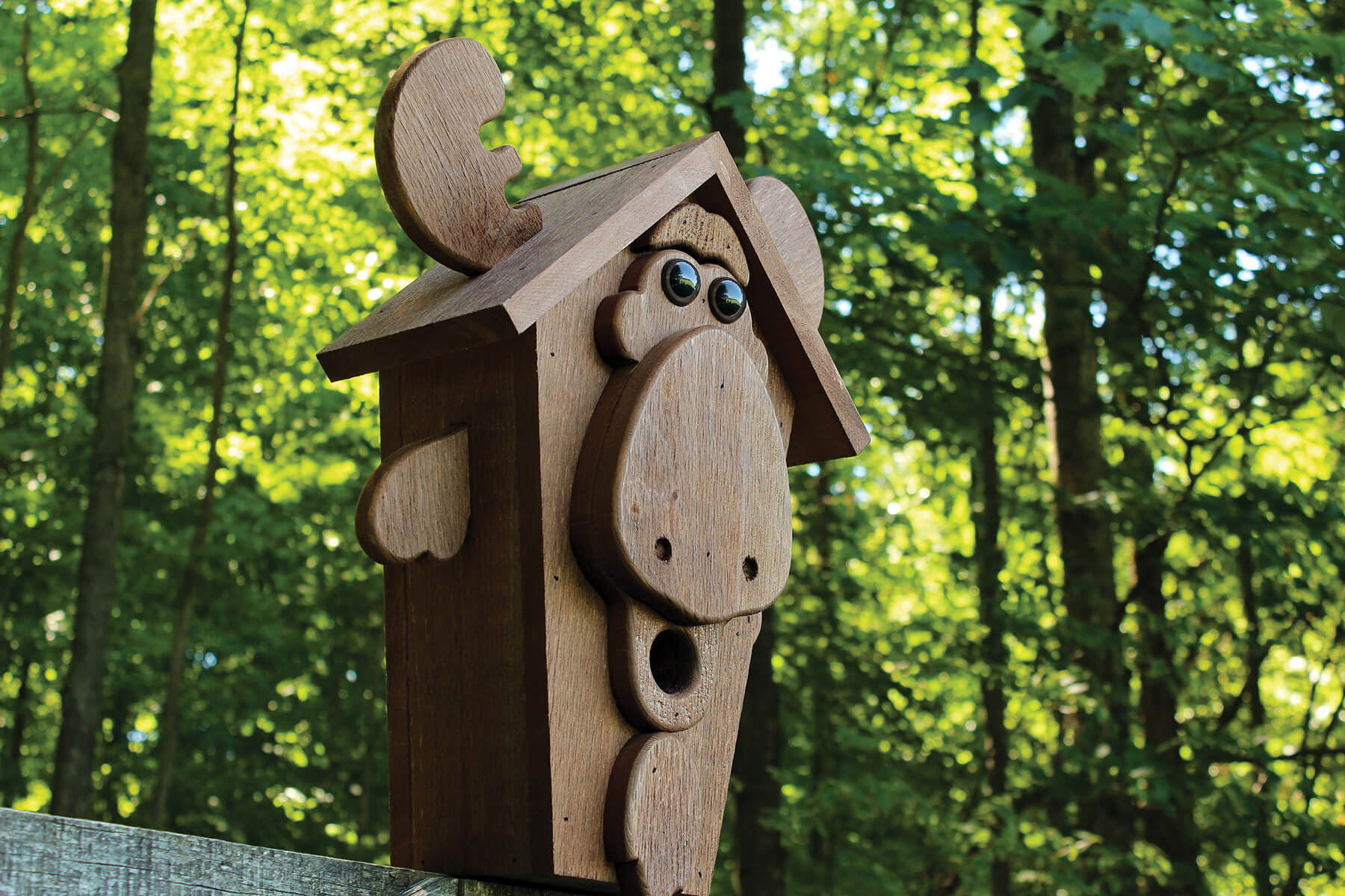 78022 Pinebush Moose Wood Birdhouse