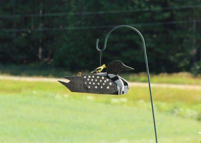 78100 Pinebush Loon Shape Wood Feeder Finch
