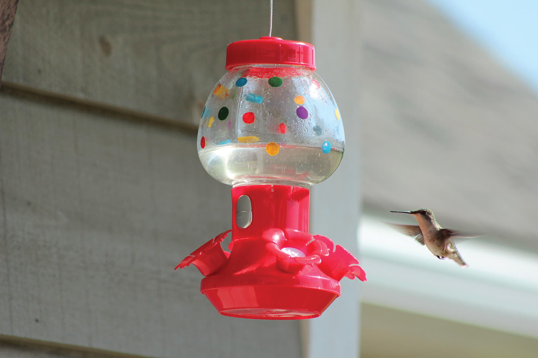 88032 Pinebush Handpainted Bubblegum Machine Style Hummingbird Feeder