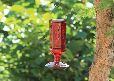 88129 Pinebush Vintage Style Bottle Glass Hummingbird Feeder