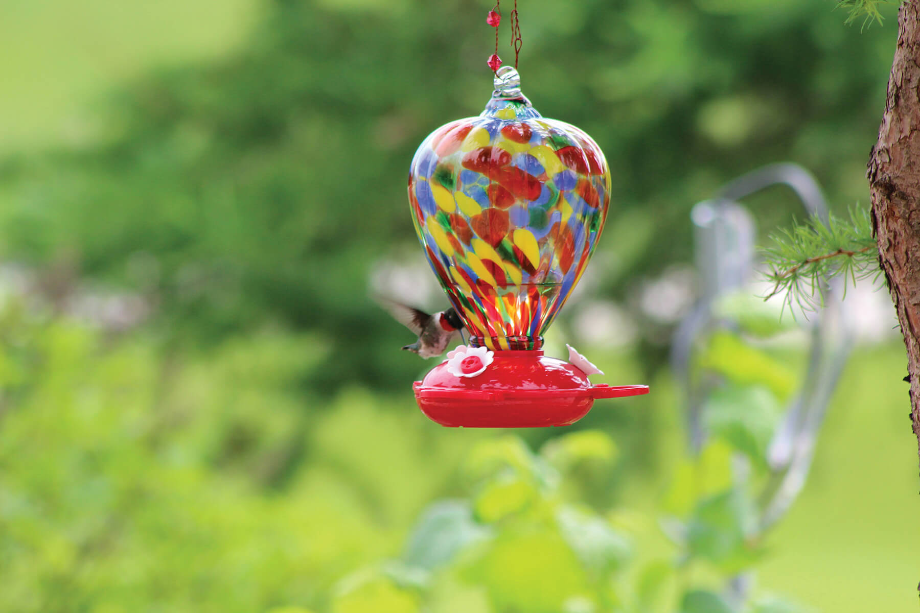 88183 Pinebush Art Glass Colour Balloon Glass Hummingbird Feeder 1